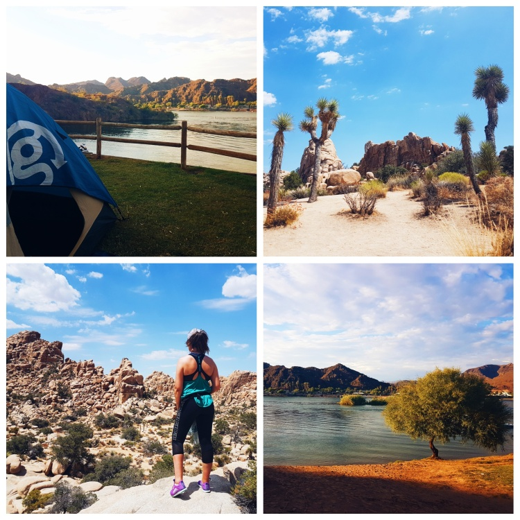 Blogger Niamh Kelly - Lake Havasu, Colorado River, Joshua Tree